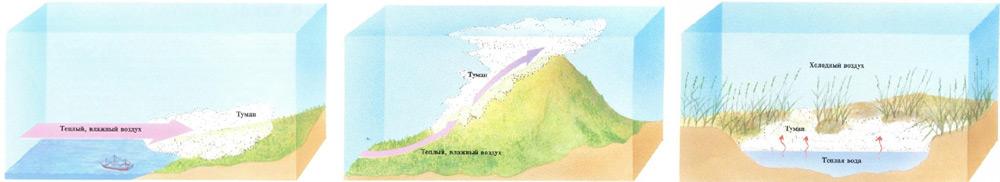 Схемы образования тумана в природе